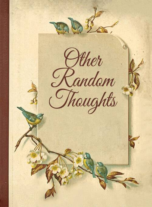 Other Random Thoughts from Your Vintage Friends