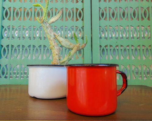 Red Vintage Enamelware Mug Farmhouse Style Planter